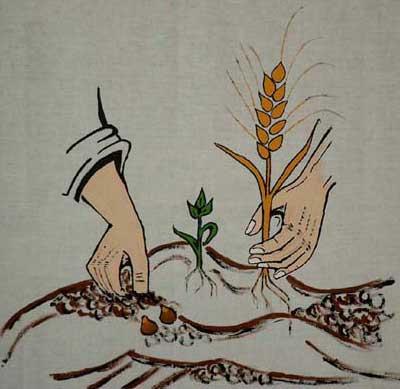 jeter les grains